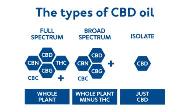 Types of CBD oil